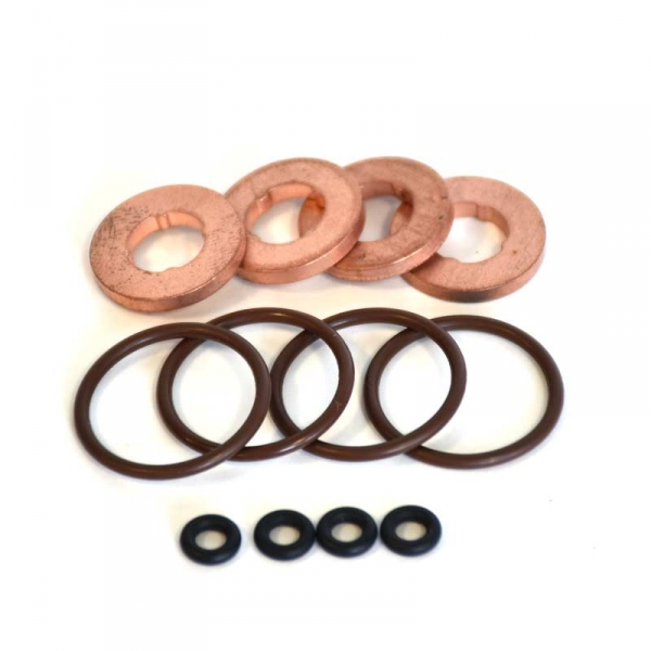 GM 19256465 Fuel Injector Seal Kit